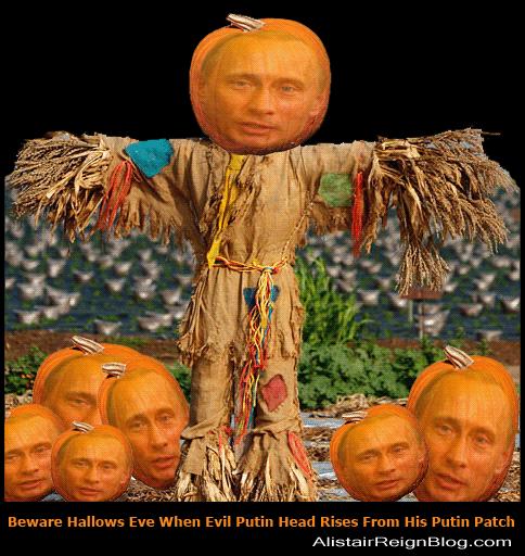 Putin Pumpkin Patch