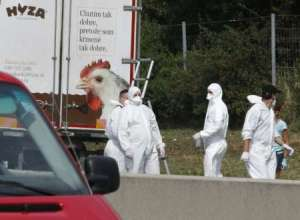 Forensic officers work at a truck found to contain a large number of dead migrants on a motorway near Neusiedl am See, Austria, on August 27, 2015. (Photo: Dieter Nagl AFP)
