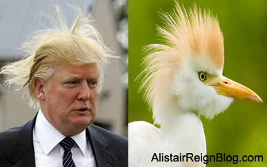 Donald Trump and Paradise Paulie. alistairreignblog.com