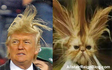 Donald Trump and Gato el-Wacko. alistairreignblog.com