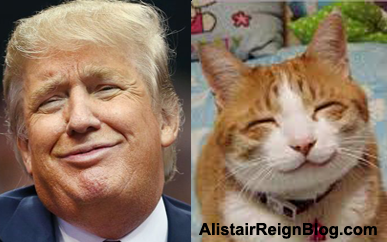 Donald Trump and Smile I'm Innocent cat. alistairreignblog.com