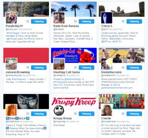 People followed by ⛽ ️Hashtag Sally ♫ hashtag_sally Twitter.png39