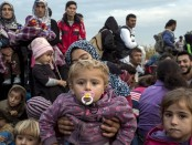 The unprecedented flight of men, women and children from the war in Syria has captured the world's attention, while around the globe there are 20 million people seeking sanctuary from war and oppression, in search of a life worth living. Most have fled to countries which are themselves poor and unstable. More than one million of the most vulnerable urgently need resettling. This is the crisis of our times, and how we respond to it is a test of our values, our spirit, our ingenuity, our generosity.