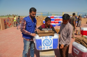 IOM distributes non food relief kits at Digaba camp to recent IDPs from Ninewa governorate. Photo IOM 2016