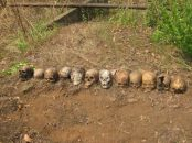 "Twelve skulls discovered in a mass grave in February 2016 near a peacekeeping base in Boali, Central African Republic. The victims are believed to be individuals who were summarily executed by Republic of Congo peacekeepers on March 24, 2014. (Photo"" © 2016 Private/ HRW)."