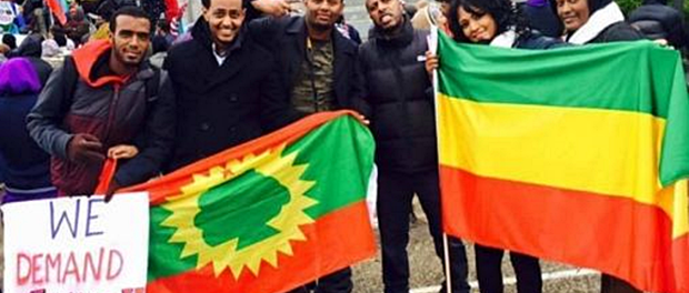 Since the start of the Oromo Protests, the Ethiopian government, using its state and affiliated media outlets, has been ridiculing the above photo of unity between Oromo and other Ethiopians – all standing together to oppose the Ethiopian government's illegal land-grabbing of Oromo farmers' land and its killing of the peaceful Oromo protesters. This photo has greatly undermined the Ethiopian government's divide-and-rule policy of the last two decades, when it stayed in power by pitting one group against the other – creating an atmosphere of disunity. (Credit: BBC. Photo: Minneapolis, Minnesota 12/2015).